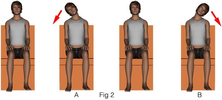 2-flexiocc81n-lateral-4-dibujos