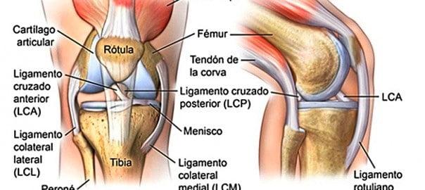 lesiones de rodilla en deportistas
