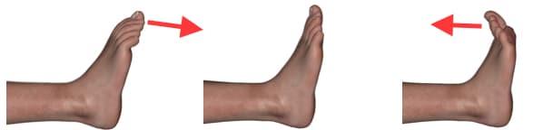 3flexoextension-dedos-pie