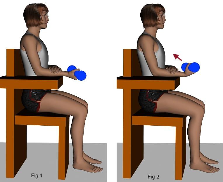 fortalecimiento-flexores-2-dibujos